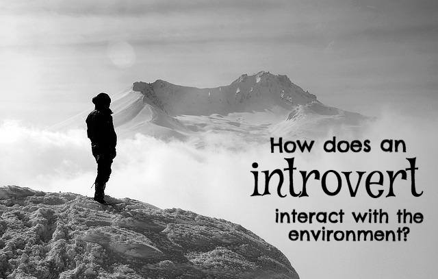 How Does Your Introversion Impact Your Physical Reactions?